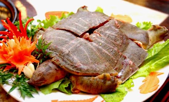 Ăn ba ba, cua, lươn đã chết có thể bị ngộ độc