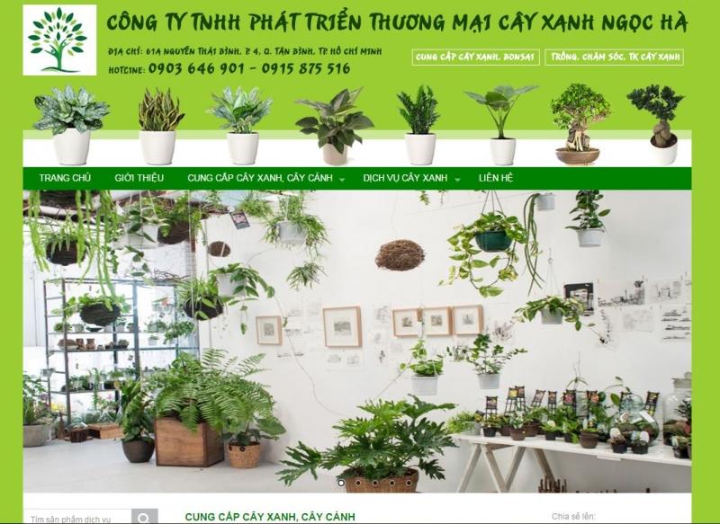 Công Ty TNHH Phát Triển Thương Mại Cây Xanh Ngọc Hà