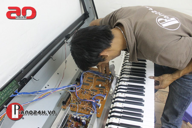 Piano24h.vn